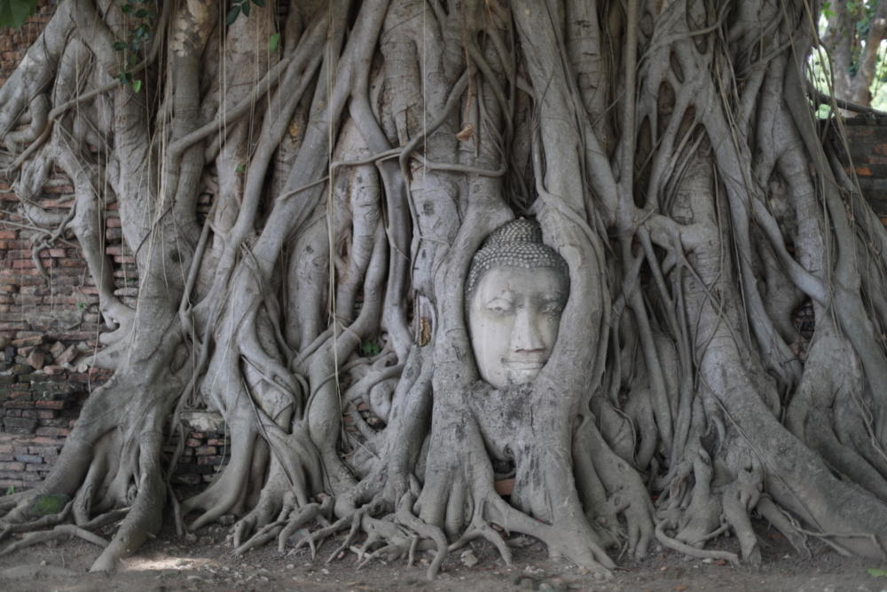 Best Places to Visit in Thailand: Ayutthaya