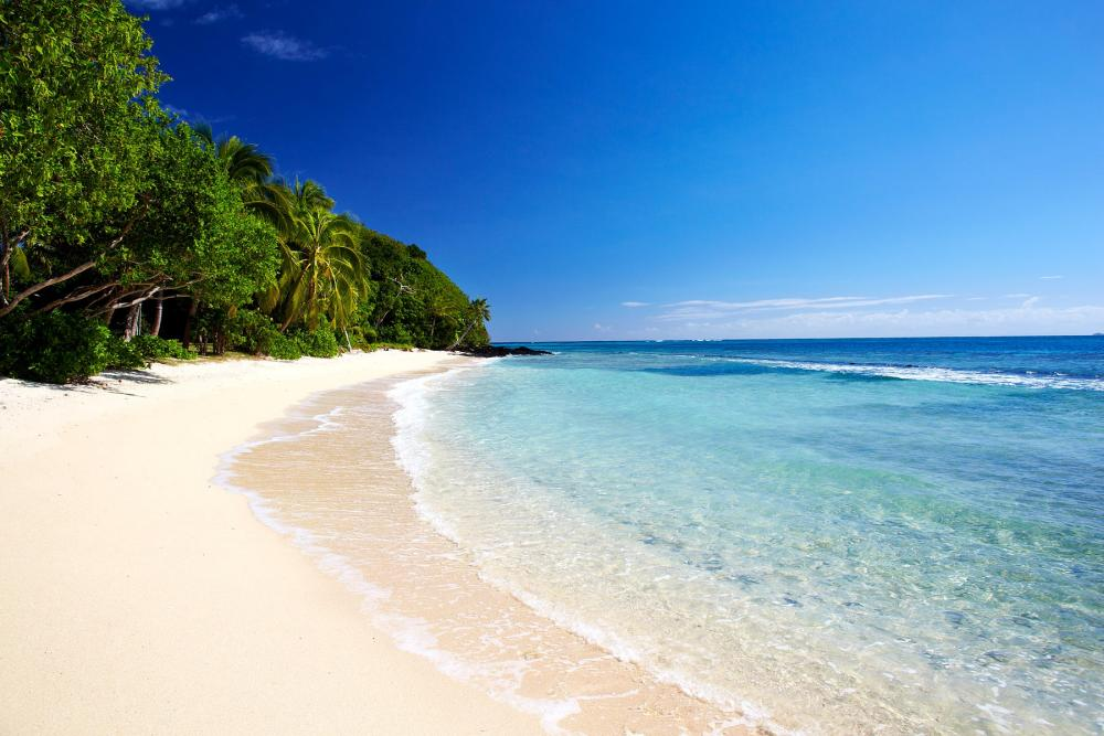 things to do in fiji for a day